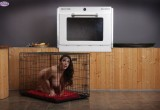 Free porn pics of Oven Roasting 1 of 40 pics