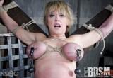 Free porn pics of Darling - Dee Williams 1 of 56 pics